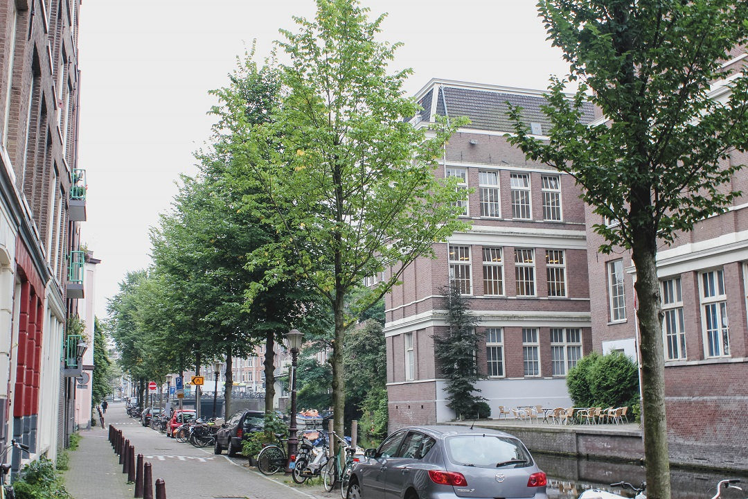 Long haul flight to Amsterdam - Lessons I learnt