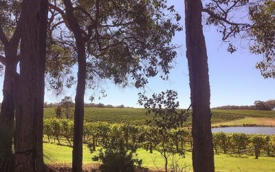 Margaret River Wineries
