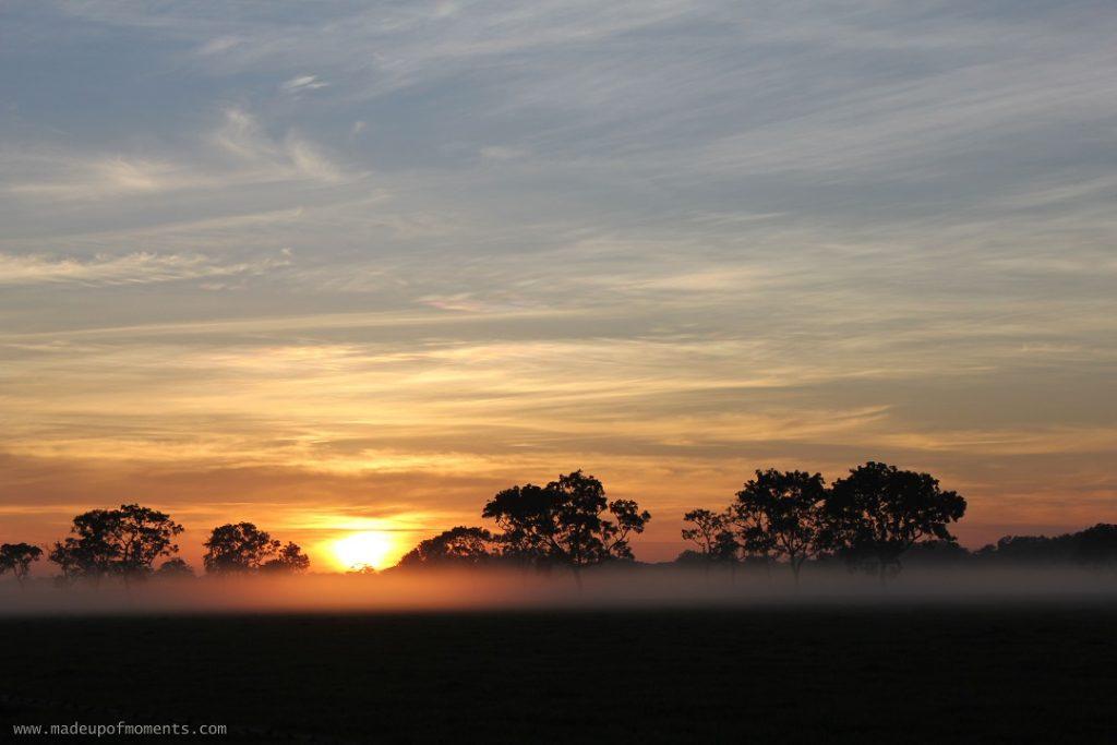 tour-of-darwin-Sunrise