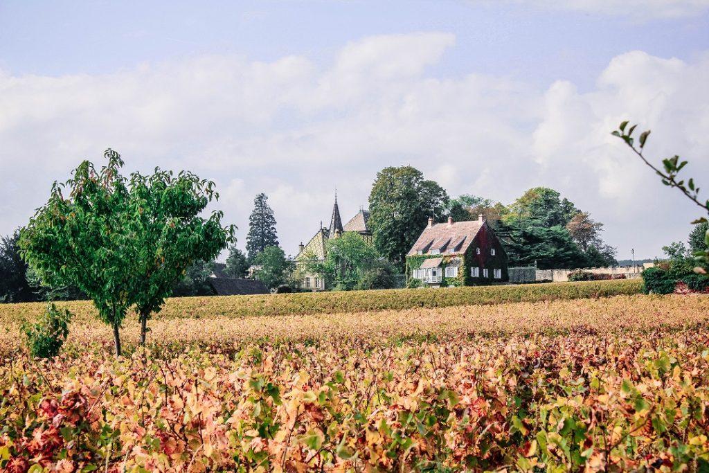 burgundy-region-vineyards